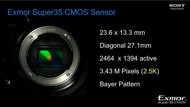 The FS100 sensor has a low resolution, relative to its size